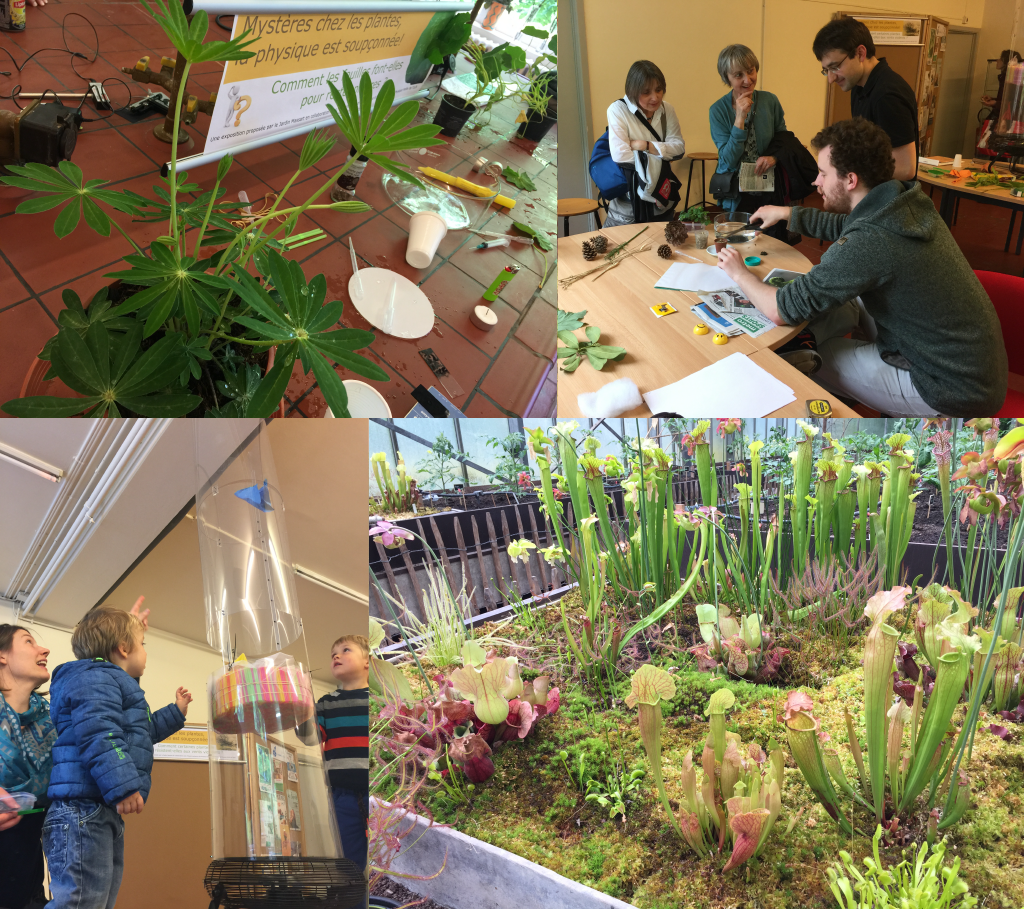 Event : Fascination of plant day